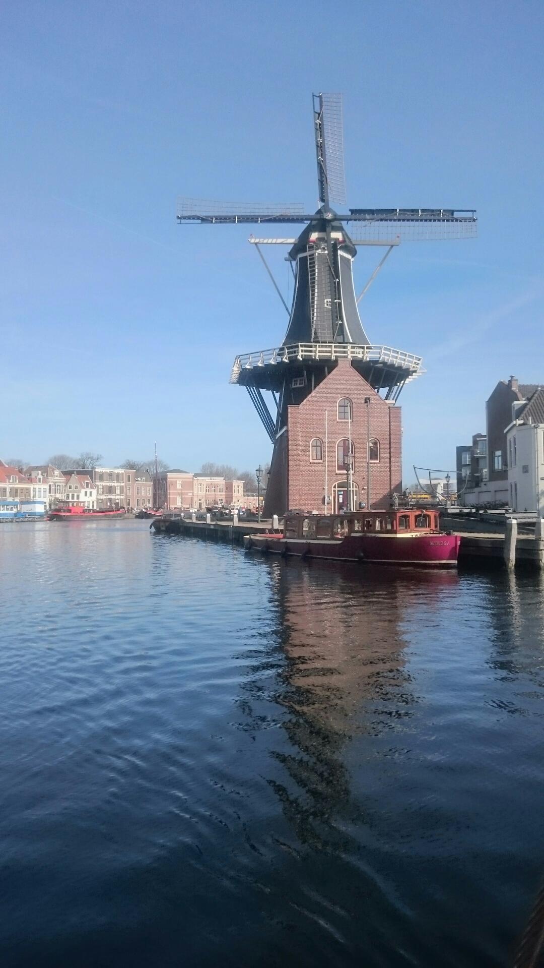 Att möta våren i Holland…