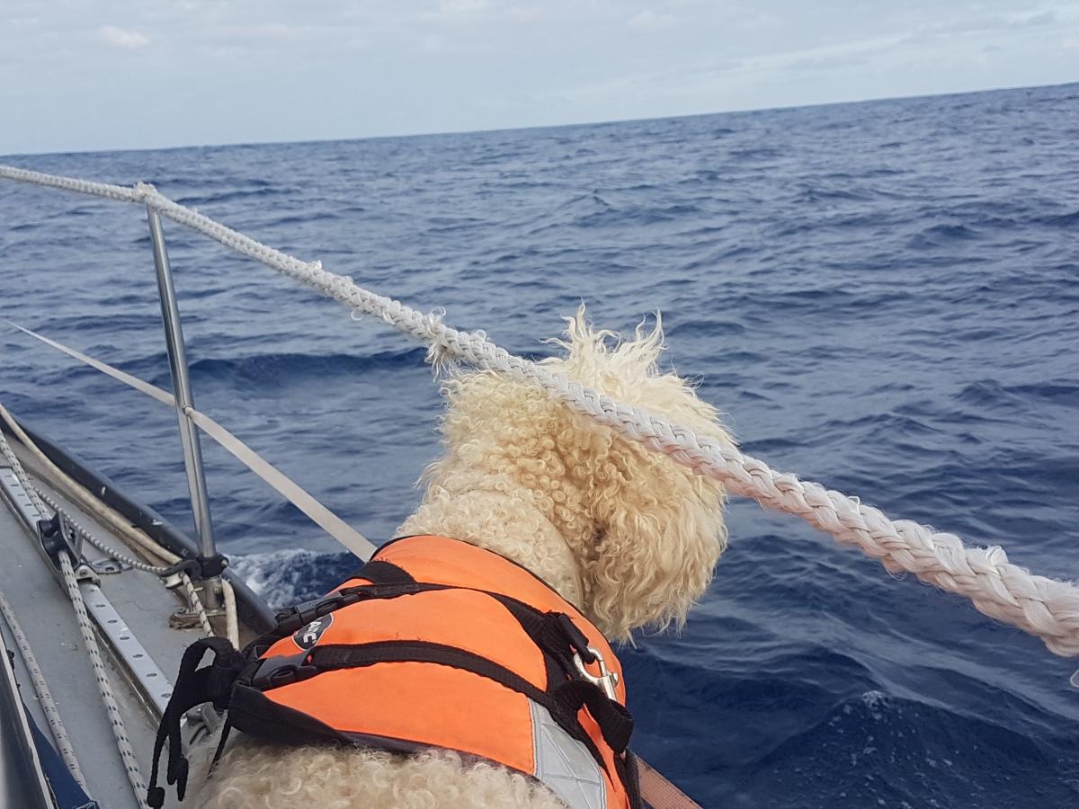 Överfarten till Spanien – Biscaya levererar & lever upp till sitt rykte
