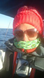 kall segling
