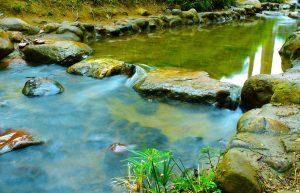 floderingenbradska