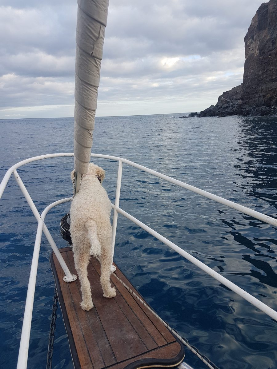 sailing to La Gomera