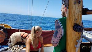 Landkrabbor och Pirater