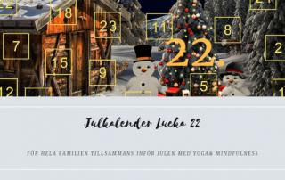 Julkalender 2018 Lucka 22