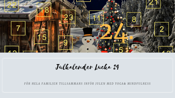 Julkalender 2018 Lucka 24 – Skaka loss