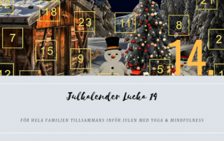 Julkalender Lucka 14