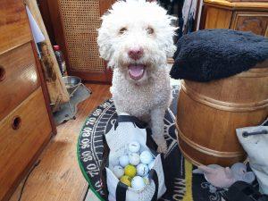 Träningsvärk och golfbollar ombord