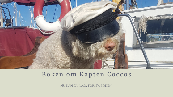 Nu kan du läsa första boken om Kapten Coccos!